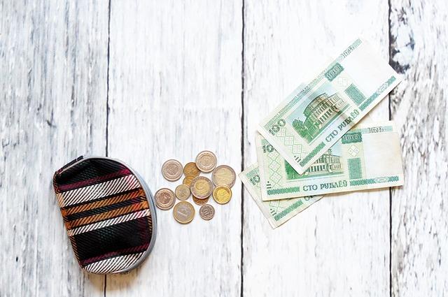 peněženka, mince, bankovky