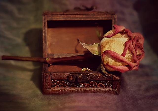 suchá růže