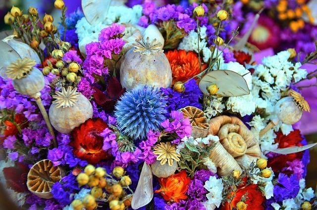 pestrost sušených květů